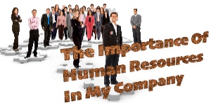 The Importance Of Human Resources In My Company